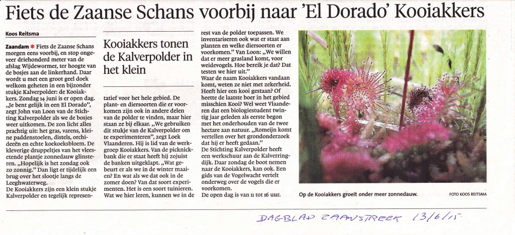 dagblad zaanstreek 13.6.15